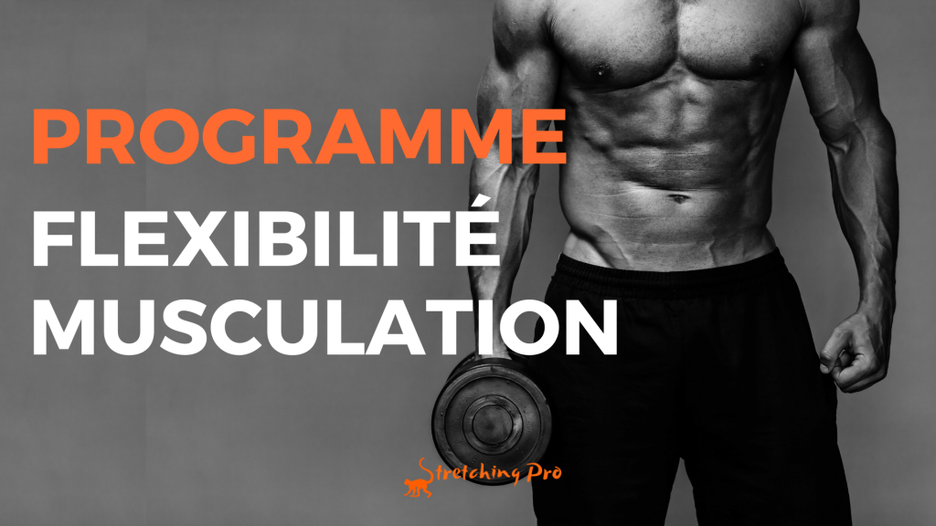 stretchingpro-programme-hercule-flexibilite-musculation